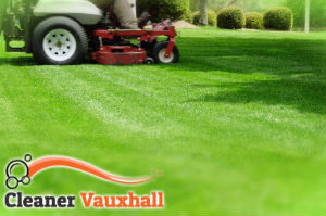 grass-cutting-vauxhall
